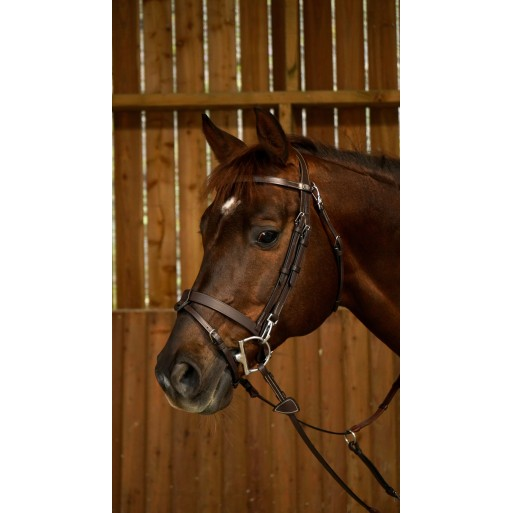 Flat flash bridle with snaps